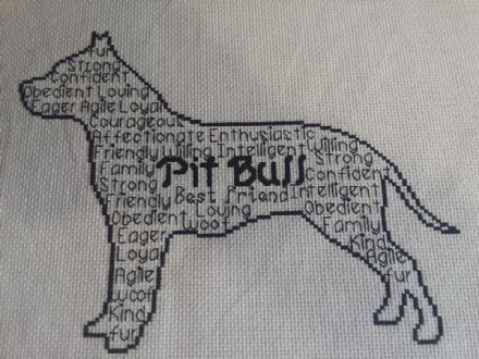 Pit Bull In Words